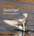 Gastvögel der Insel Spiekeroog